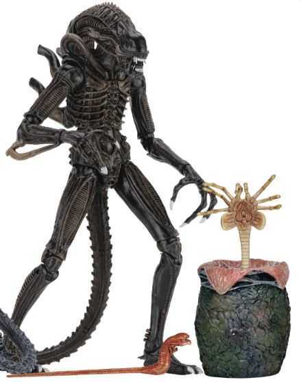 ALIENS ULTIMATE ALIENS WARRIOR 17,5 cm ACTIONFIGUR BROWN VERSION