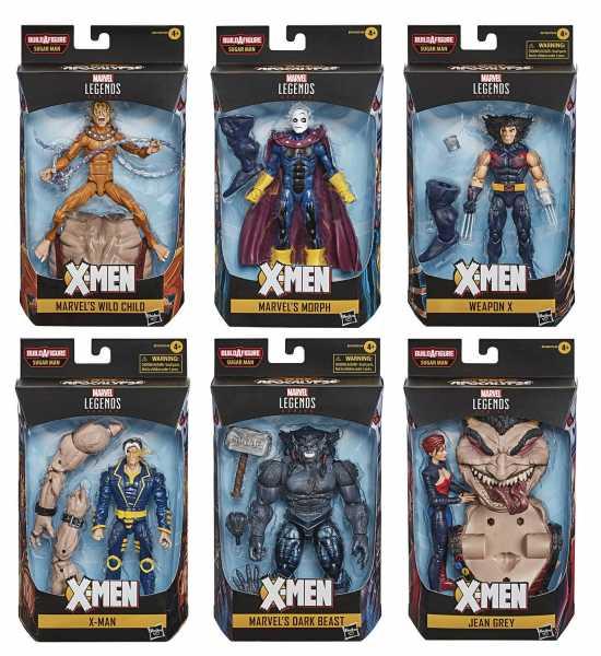 X-Men Age of Apocalypse Marvel Legends 2020 6 Inch Actionfiguren Komplett-Set