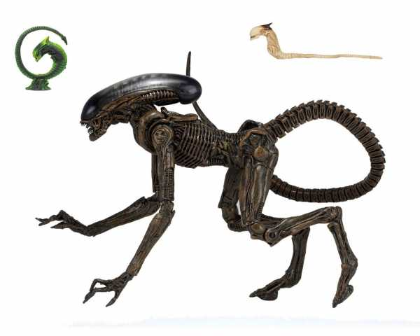 Alien 3 Ultimate Dog Alien 23 cm Actionfigur