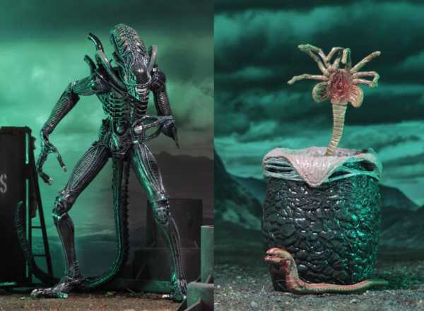 ALIENS ULTIMATE ALIENS WARRIOR 17,5 cm ACTIONFIGUR BLUE VERSION